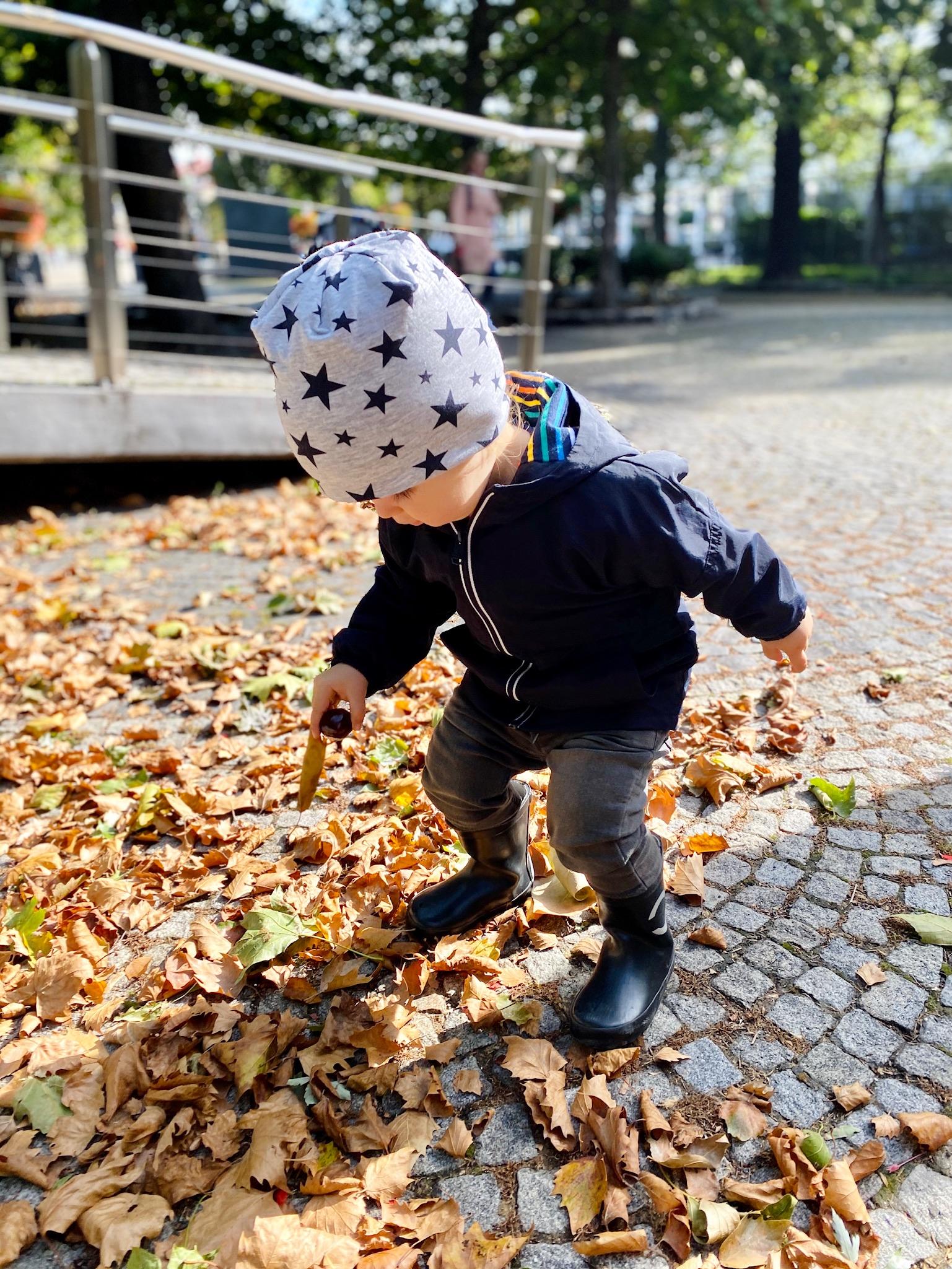 jesen s detmi