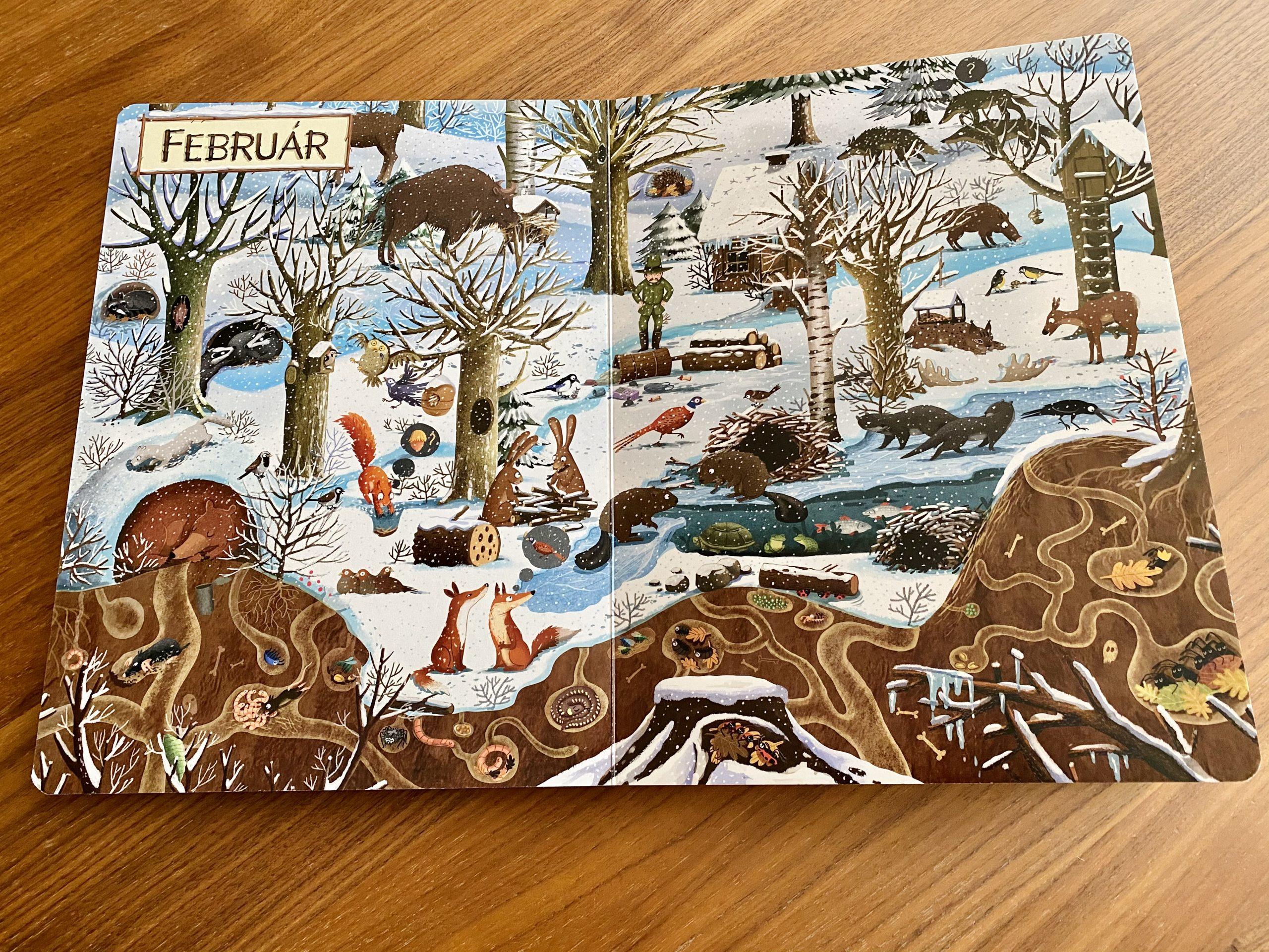 kniha Rok v lese